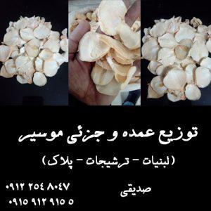 قیمت خرید و فروش عمده موسیر همدان در سال جدید