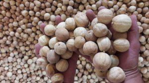 قیمت فروش انواع لیمو عمانی سال 99